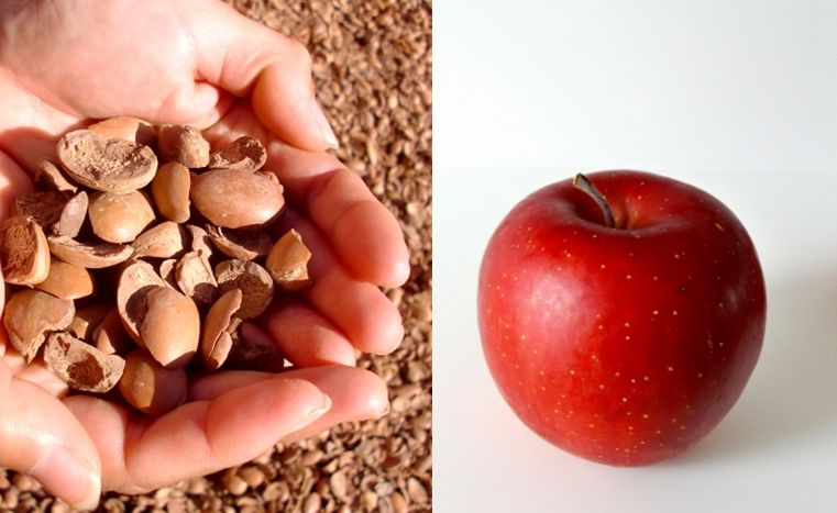 アルガンとリンゴ